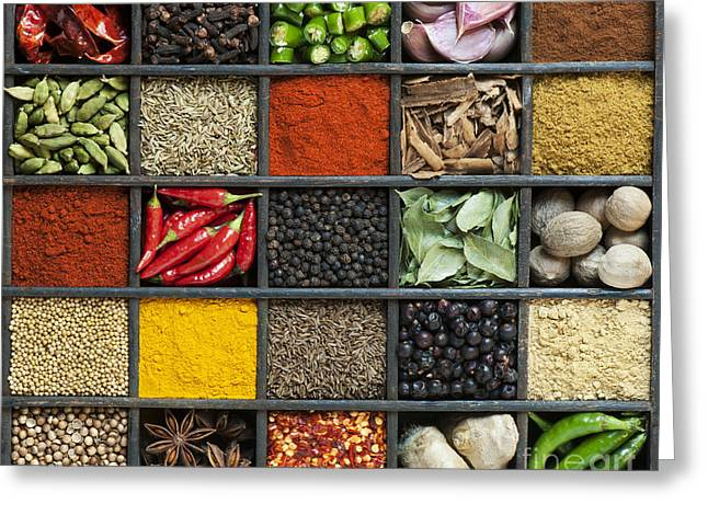 Ingredients Greeting Cards - Indian Spice Grid Greeting Card by Tim Gainey