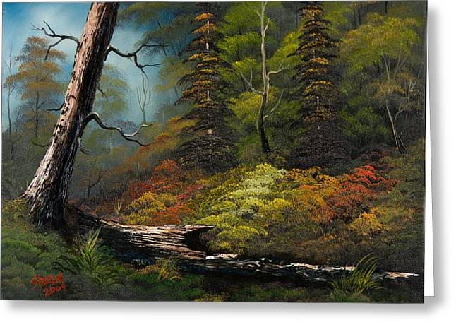 Bob Ross Paintings Greeting Cards - Secluded Forest Greeting Card by C Steele