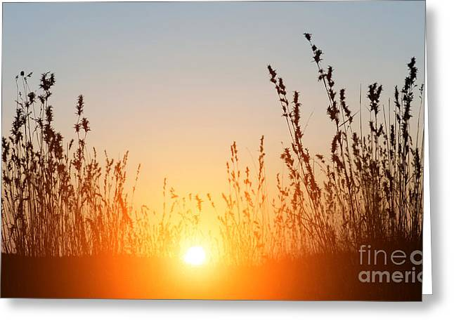 Flaring Greeting Cards - Indian Sunset Greeting Card by Tim Gainey
