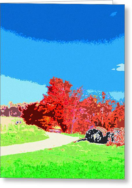 Indiana Autumn Greeting Cards - Indiana Autumn Greeting Card by Paul Price