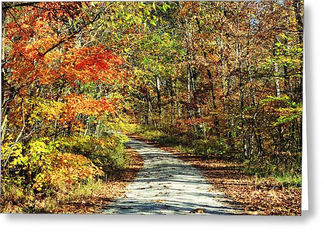 Indiana Autumn Greeting Cards - Indiana Back Road in Watercolor Greeting Card by Lorna Rogers Photography