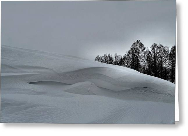 Snow Drifts Greeting Cards - Indiana Drifter Greeting Card by Julie Dant