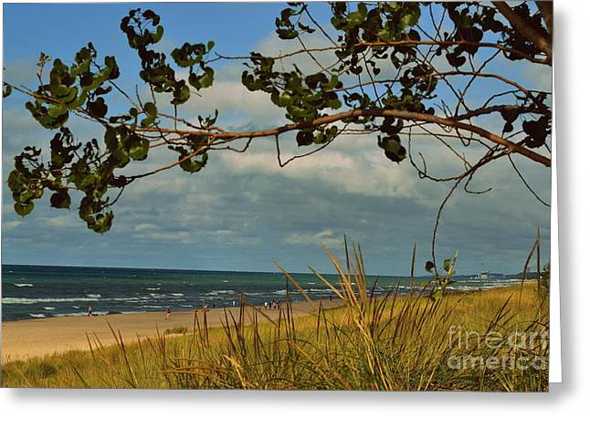 Indiana Dunes Greeting Cards - Indiana Dunes Fauna Beachscape Greeting Card by Amy Lucid