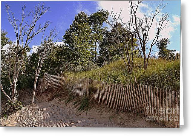 Indiana Dunes Greeting Cards - Indiana Dunes Landscapes Greeting Card by Amy Lucid