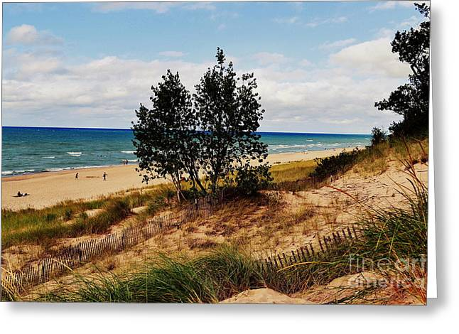 Indiana Dunes Greeting Cards - Indiana Dunes Two Tree Beachscape Greeting Card by Amy Lucid
