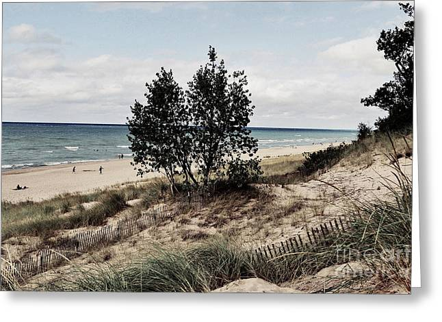 Indiana Dunes Greeting Cards - Indiana Dunes Two Trees Greeting Card by Amy Lucid