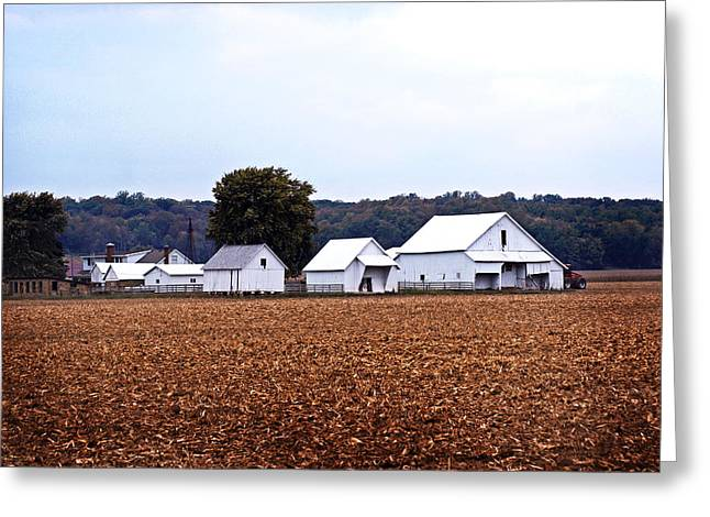 Indiana Autumn Greeting Cards - Indiana Farms Greeting Card by Caitlyn Hymer