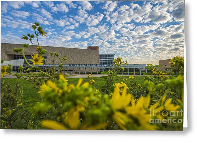Indiana Flowers Greeting Cards - Indiana State Museum Bravo Greeting Card by David Haskett