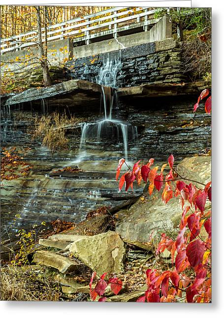 Indiana Autumn Greeting Cards - Indiana - Strahl Lake Waterfall - Brown County State Park Greeting Card by Ron Pate