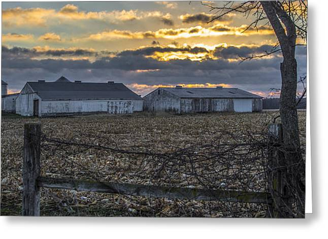Indiana Farms Greeting Cards - Indiana Sunrise Greeting Card by John McGraw