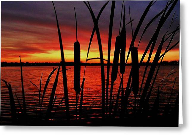 Rural Indiana Greeting Cards - Indiana Sunset Greeting Card by Benjamin Yeager