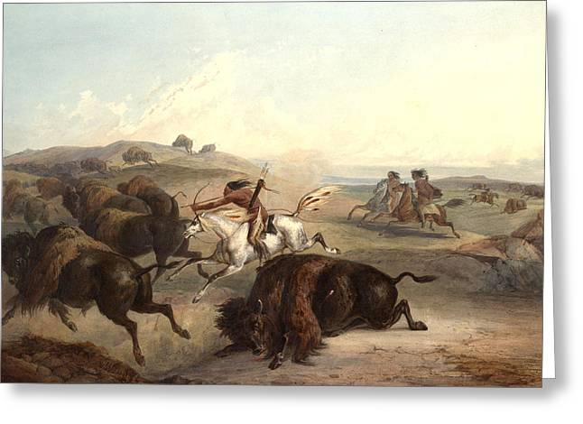 The American Buffalo Greeting Cards - Indians Hunting The Bison Greeting Card by Karl Bodmer