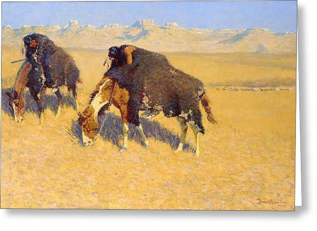 Indians Simulating Buffalo Greeting Card by Frederic Remington