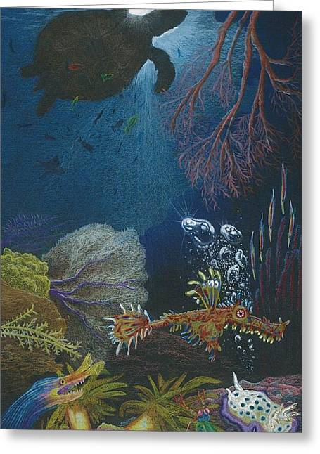 Underwater Diva Drawings Greeting Cards - Indigenous Aquatic Creatures of New Guinea Greeting Card by Beth Dennis
