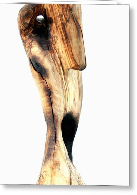 Olive Sculptures Greeting Cards - Indignado 1 Greeting Card by Jorge Berlato