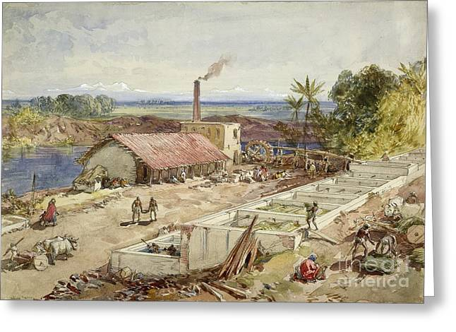 Colonial Man Greeting Cards - Indigo Dye Factory, Bengal, 1860s Greeting Card by British Library