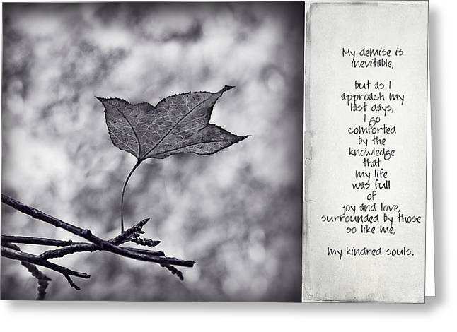 Kindred Spirits Greeting Cards - Inevitable Greeting Card by Rosemary Scott