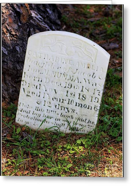Battlefield Site Greeting Cards - Infants Headstone at Historic Mumma Farm Graveyard Greeting Card by Patti Whitten