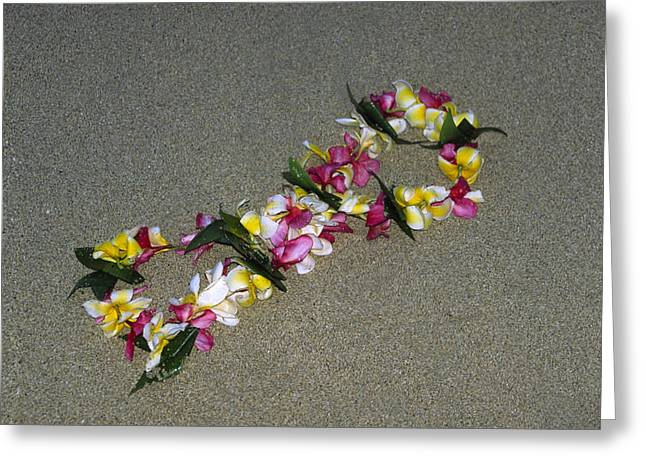 Hawii Greeting Cards - Infinity Lei Greeting Card by Morris  McClung