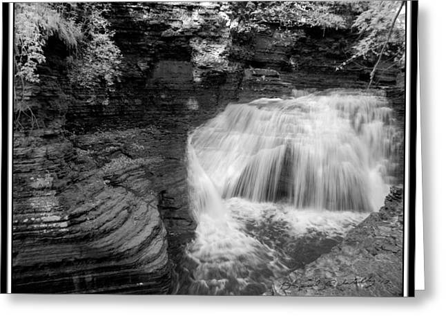 Buttermilk Falls State Park Greeting Cards - Infrared Buttermilk Falls 7 Greeting Card by David Blatchley