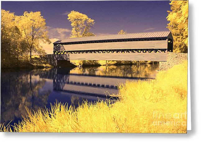 Ir Greeting Cards - Infrared Fall Colors Greeting Card by Paul W Faust -  Impressions of Light