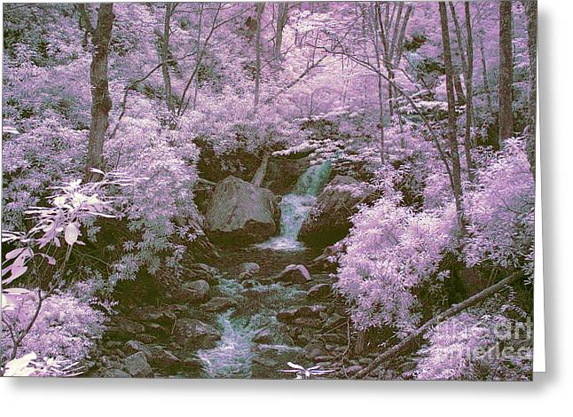 Ir Greeting Cards - Infrared mountain stream Greeting Card by Paul W Faust -  Impressions of Light