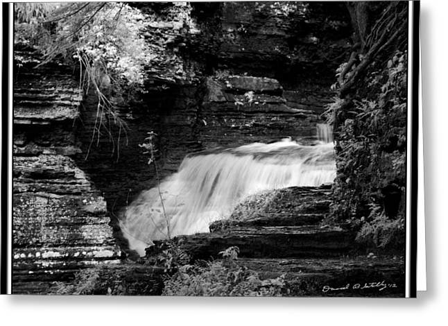 Buttermilk Falls State Park Greeting Cards - Infrared Upper Buttermilk Falls 15 Greeting Card by David Blatchley