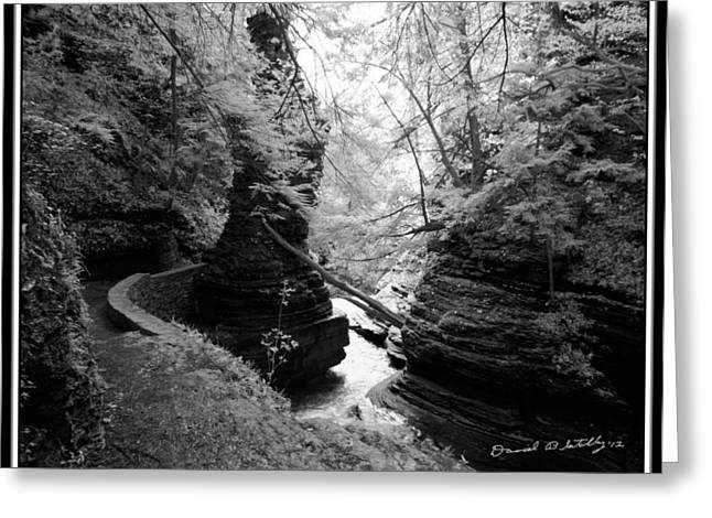 Buttermilk Falls State Park Greeting Cards - Infrared Upper Buttermilk Falls 16 Greeting Card by David Blatchley