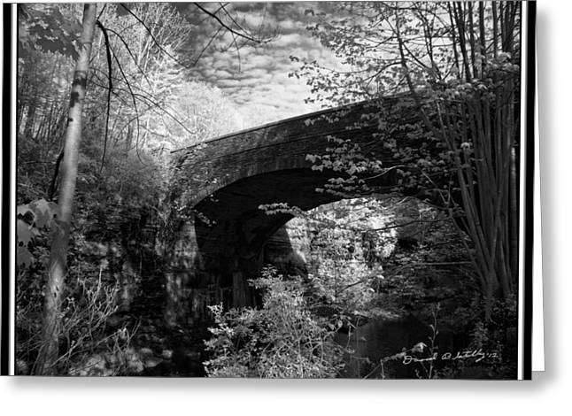 Buttermilk Falls State Park Greeting Cards - Infrared Upper Buttermilk Falls 19 Greeting Card by David Blatchley