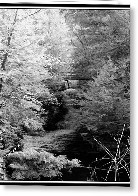 Buttermilk Falls State Park Greeting Cards - Infrared Upper Buttermilk Falls 26 Greeting Card by David Blatchley