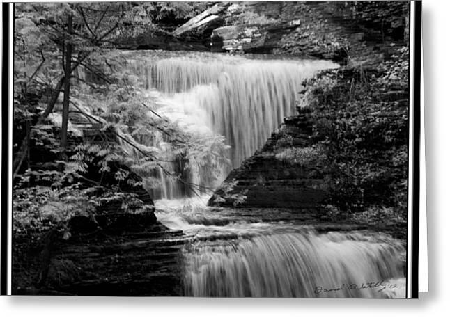 Buttermilk Falls Greeting Cards - Infrared Upper Buttermilk Falls 9 Greeting Card by David Blatchley