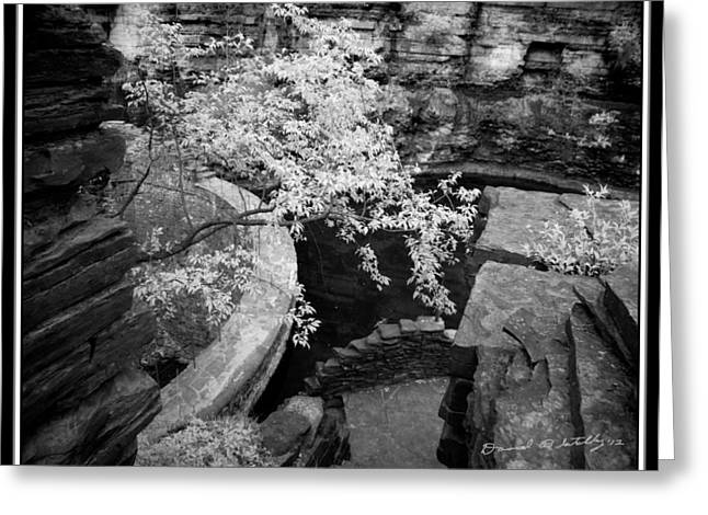 Buttermilk Falls State Park Greeting Cards - Infrared Upper Buttermilk Falls Dam 22 Greeting Card by David Blatchley