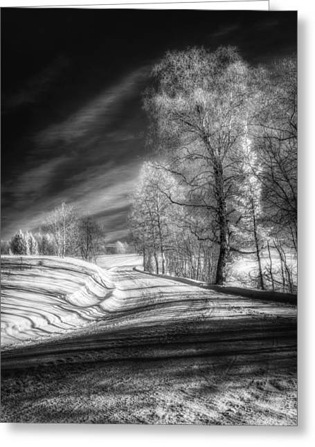 Snowy Day Greeting Cards - Infrared Winter Road BW Greeting Card by Erik Brede