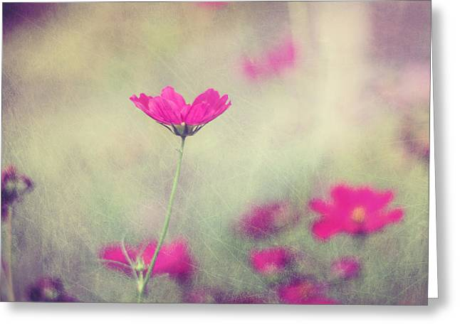 Pink Flower Greeting Cards - Ingrids Garden Greeting Card by Amy Tyler