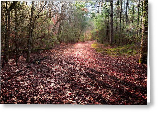 Fallen Leaf Greeting Cards - INHALE the FOREST Greeting Card by Karen Wiles