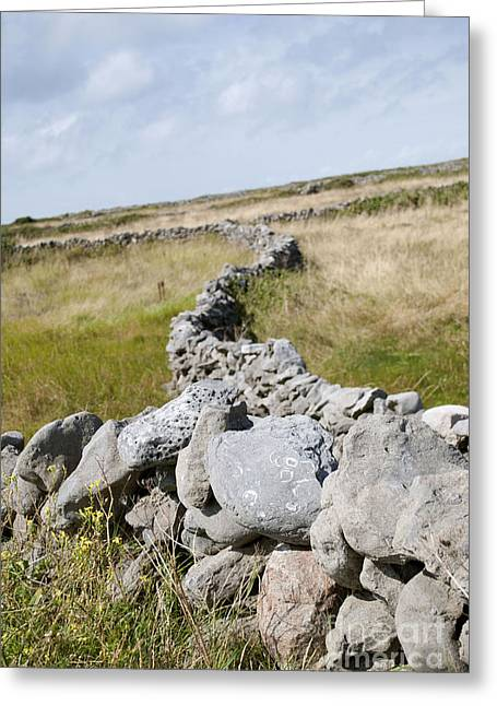 Inis Mor Fields Of Stone Greeting Card by Danielle Summa