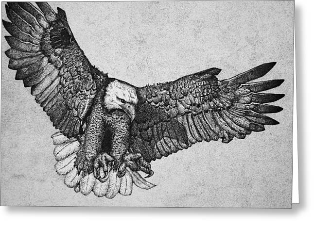 Wild Life Drawings Greeting Cards - Ink Eagle Greeting Card by James Williams
