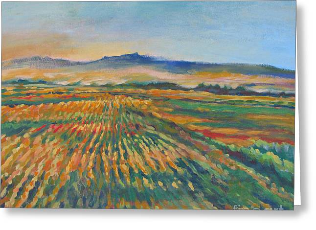 Stockton Paintings Greeting Cards - Inland Fields Greeting Card by Vanessa Hadady BFA MA