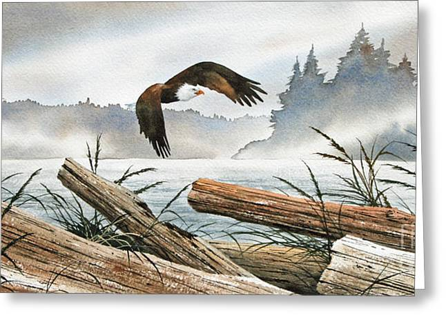 Eagle Images Greeting Cards - Inland Sea Eagle Greeting Card by James Williamson