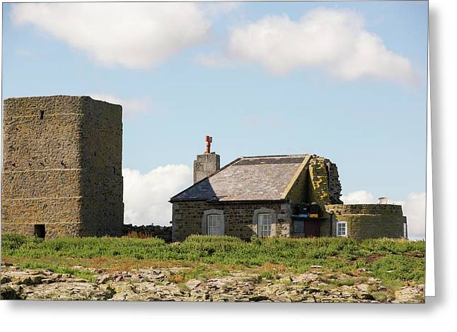 Inner Farne Greeting Card by Ashley Cooper