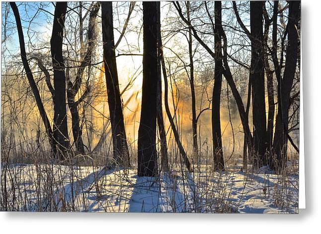 Dazzling Blue Greeting Cards - Inner Heat Greeting Card by Frozen in Time Fine Art Photography