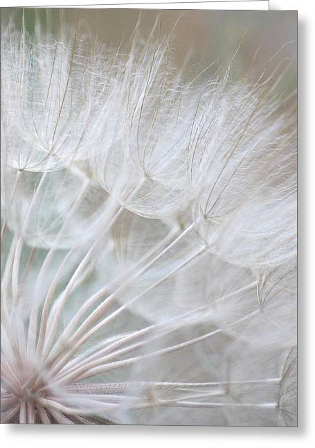Best Seller Greeting Cards - Innocence Greeting Card by  The Art Of Marilyn Ridoutt-Greene