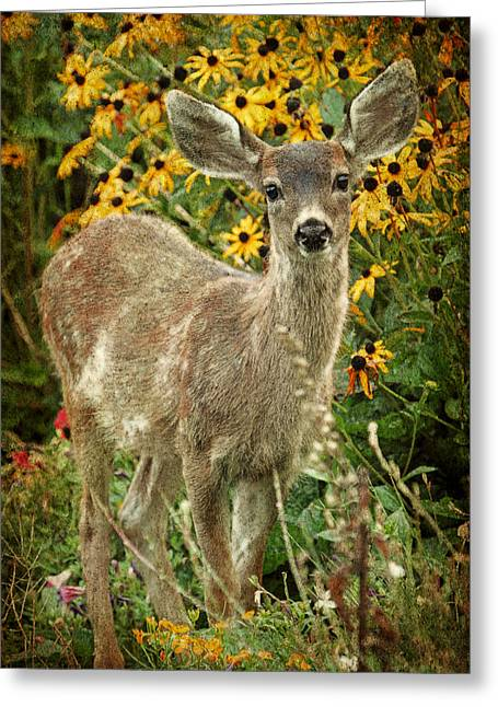 Fawn Mixed Media Greeting Cards - Innocent Fawn and Flowers Greeting Card by Peggy Collins