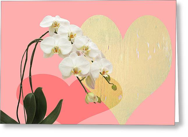 Innocent Love Greeting Card by Paul Ashby