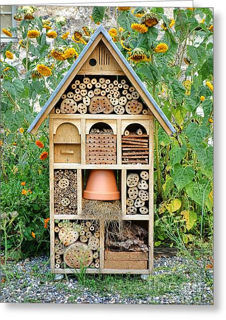 Component Greeting Cards - Insect Hotel Greeting Card by Olivier Le Queinec
