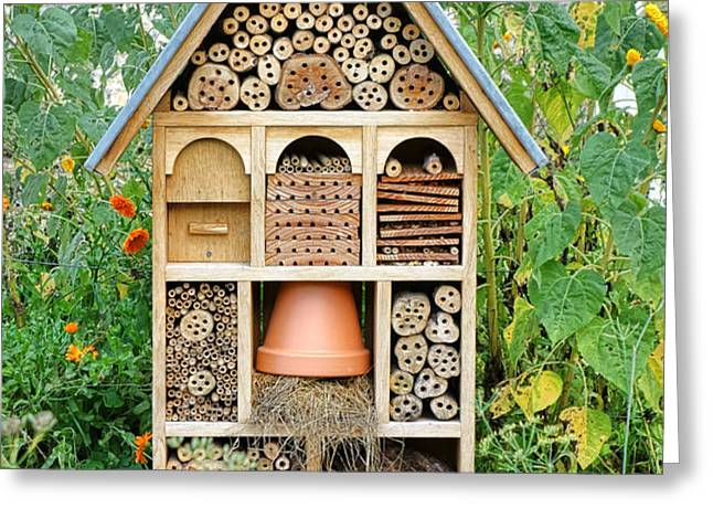 Insect Hotel Greeting Card by Olivier Le Queinec