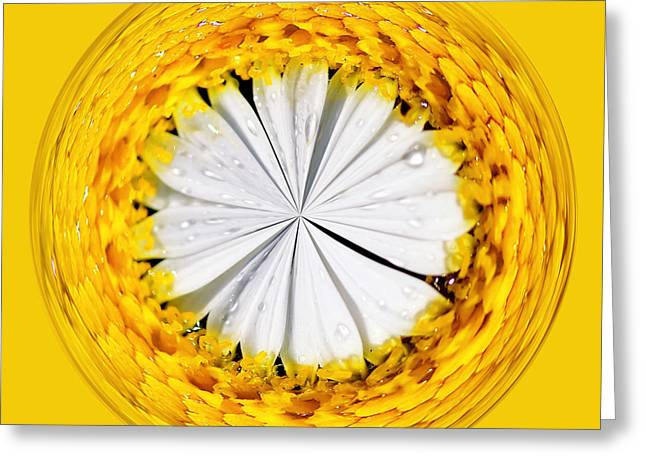 Inside Out Greeting Cards - Inside-out Daisy Greeting Card by Kaye Menner
