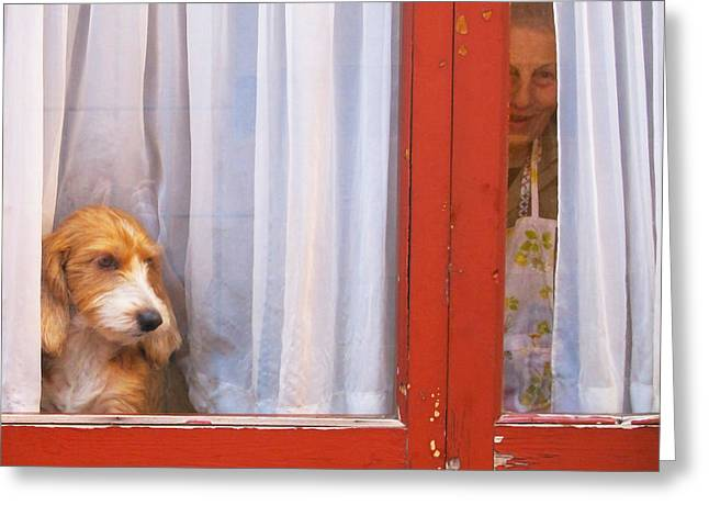 Dog In Window Greeting Cards - Inside Outside Greeting Card by Rondi Lightmark