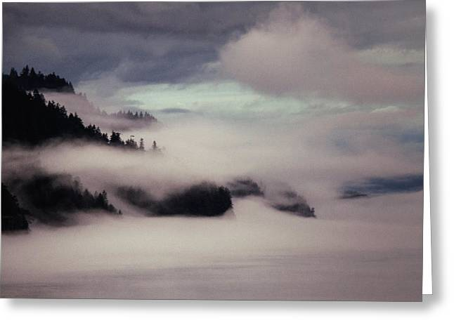 Foggy Ocean Greeting Cards - Inside Passage in the Mist Greeting Card by Vicki Jauron