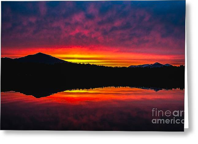 Inside Passage Sunrise Greeting Card by Robert Bales